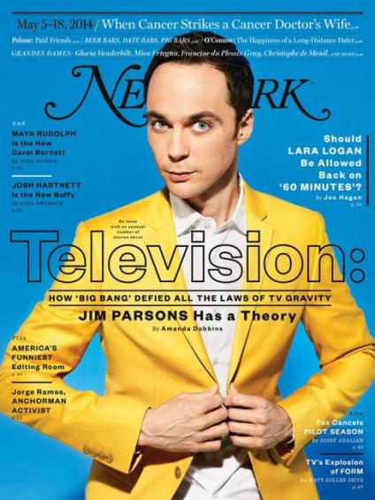 NY Mag TV Issue