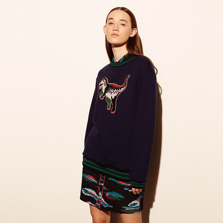 NYFW Coach 1941  Stranger Things and T-Rex Sweaters  4fbba6039f74